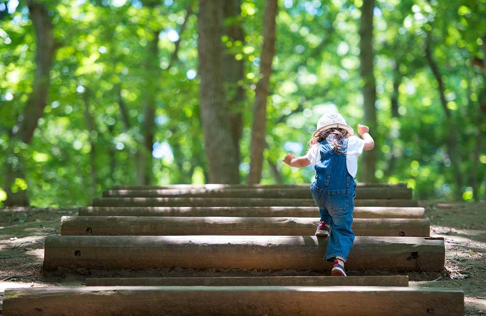 公園遊びで知った「子どもの体力差」に愕然…散歩は体力作りの基本